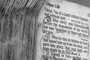 scripturepic